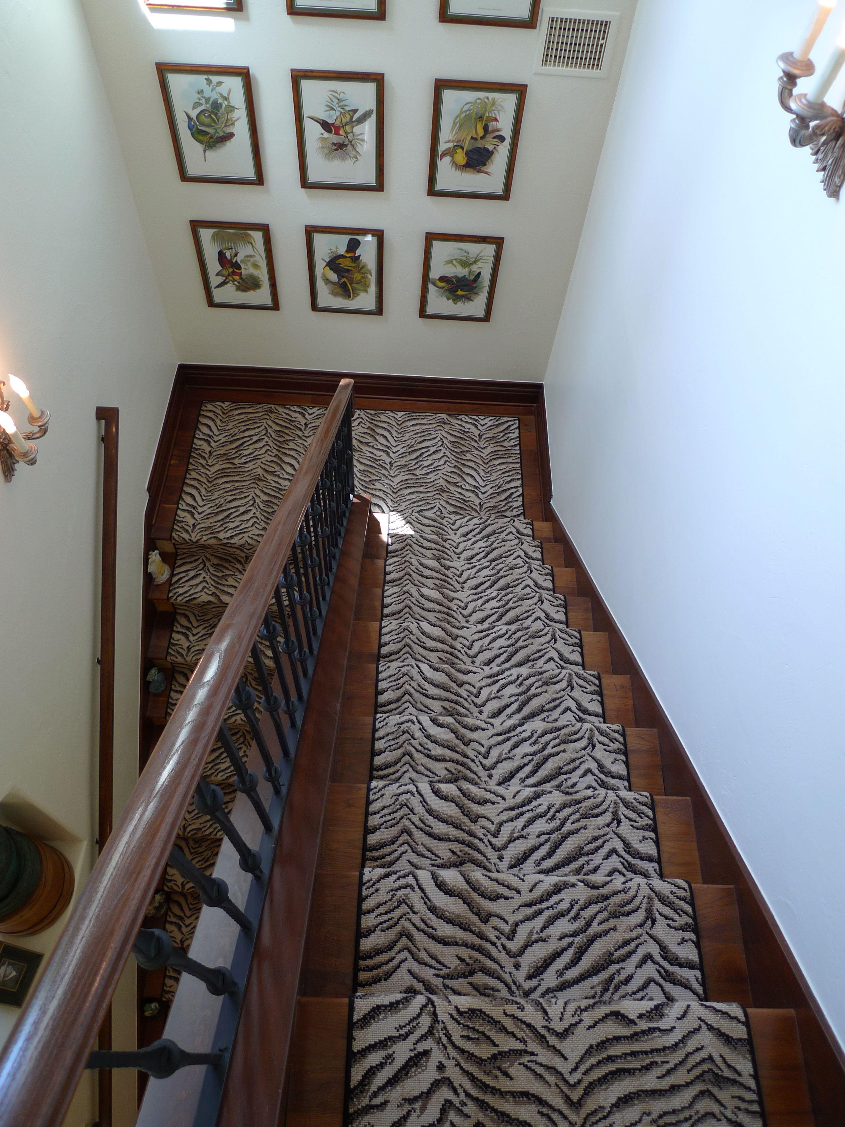 Couristan Archives Schroeder Carpet