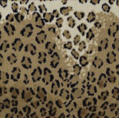 Helio's Leopard